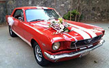 FORD MUSTANG (66)